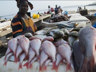 Le port de pêche de Lomé, une vache à lait pour les pêcheurs